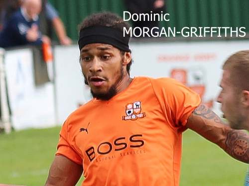Dominic Morgan-Griffiths, Hartley Wintney FC