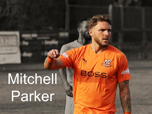 Mitch Parker, Hartley Wintney FC